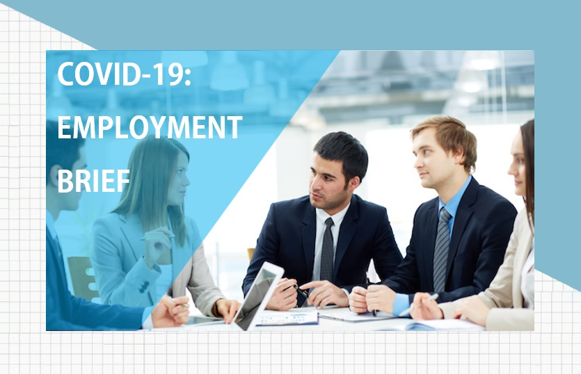 <p>Brief: COVID-19 and Employment Issues</p>